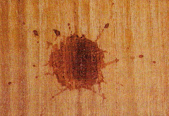 Blood spatter on a rough surface