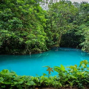 The wonderfully beautiful blue hue of the Rio Celeste