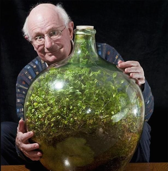 Garden in a bottle has not been water in over 40 years!