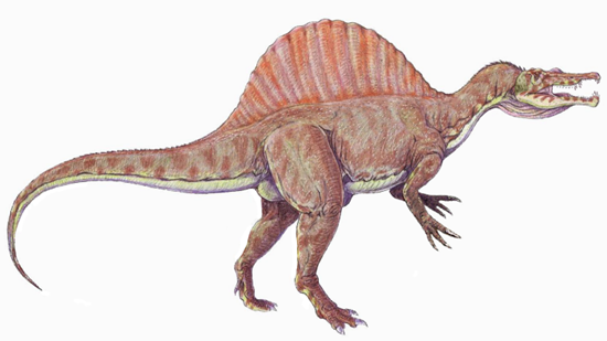 Spinosaurus could have looked like this