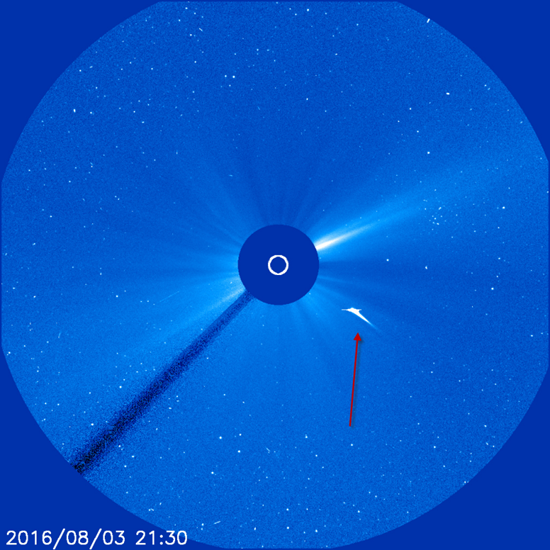 Sungrazer comet plunging into Sun at a mind-boggling 373 miles per second