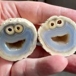 Cookie Monster inside Agate gemstone
